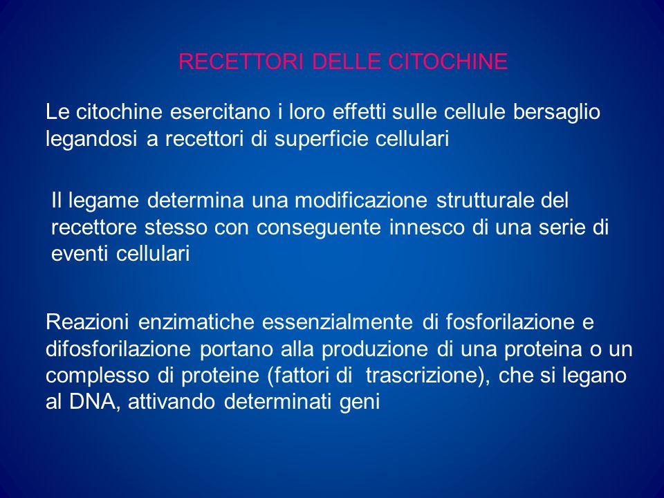 CELLULE STAMINALI Cellule dotate della capacità di: 1) Auto-rinnovamento (capacità di produrre cellule figlie con caratteristiche identiche; tale capacità si riduce con la differenziazione) 2) Proliferazione 3) Differenziazione (capacità di dar luogo a tutte le linee maturative che producono eritrociti, granulociti neutrofili, eosinofili e basofili, mastociti, monociti e macrofagi, megacariociti, linfociti B e T, cellule natural killer e cellule dendritiche)
