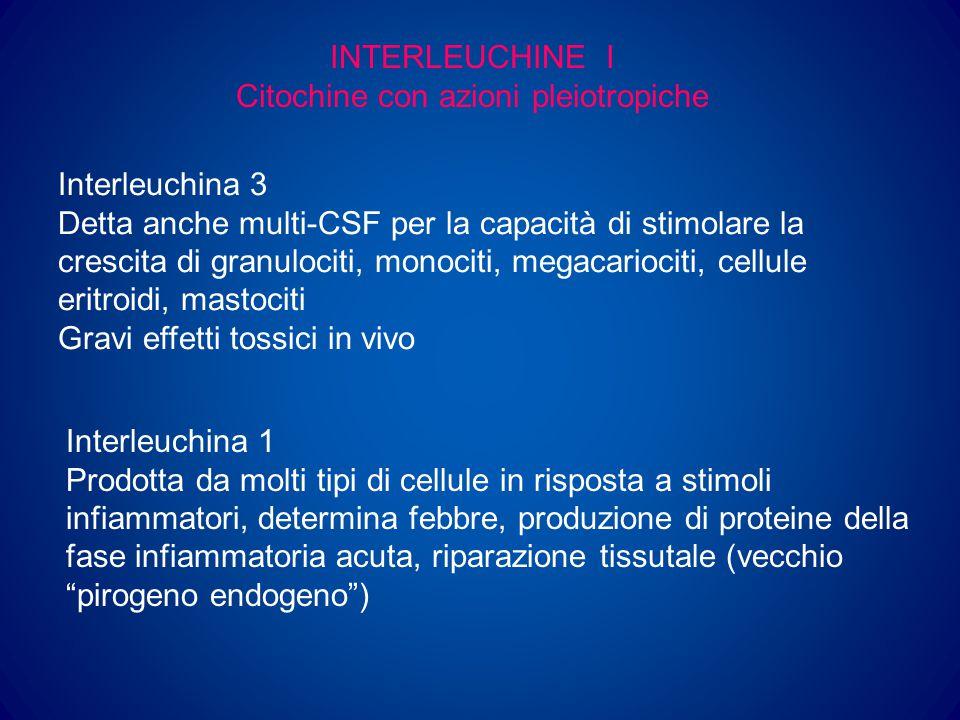 INTERLEUCHINE II Interleuchina 2 Prodotta dai linfociti T, aumenta la produzione di altre linfochine, stimola e attiva i linfociti B e le cellule NK Utilizzata nella terapia di alcune neoplasie Interleuchina 5 Stimola produzione, maturazione e funzione degli eosinofili