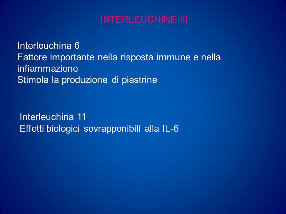 INTERLEUCHINE IV Kit Ligand (Steel factor) Effetto sinergico con numerose altre citochine nella stimolazione delle cellule staminali multipotenti Trombopoietina Regolatore più importante della proliferazione e differenziazione dei megacariociti e della produzione di piastrine Agisce su molte altre linee cellulari ed è uno dei regolatori più importanti delle cellule staminali multipotenti