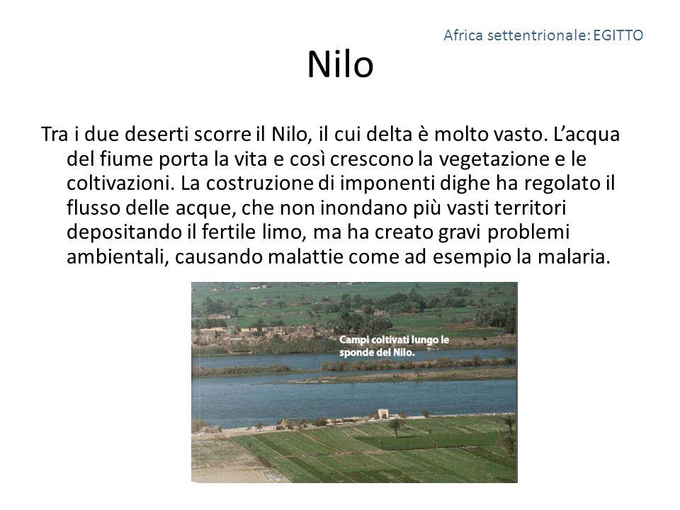 Nilo Tra i due deserti scorre il Nilo, il cui delta è molto vasto. L'acqua del fiume porta la vita e così crescono la vegetazione e le coltivazioni. L
