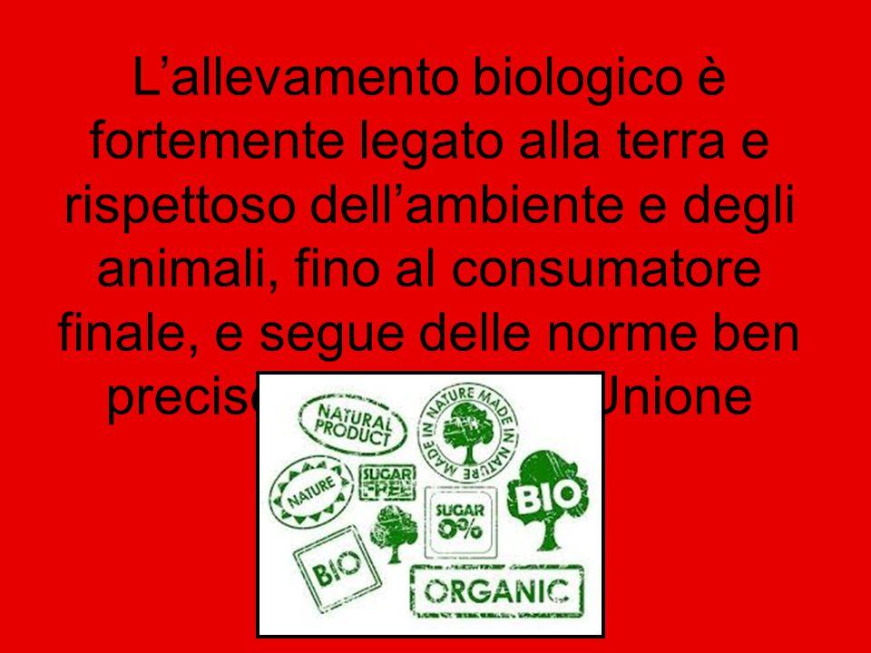 Si parla sempre di più in Italia di carne biologica, di animali biologici, di allevamenti biologici.