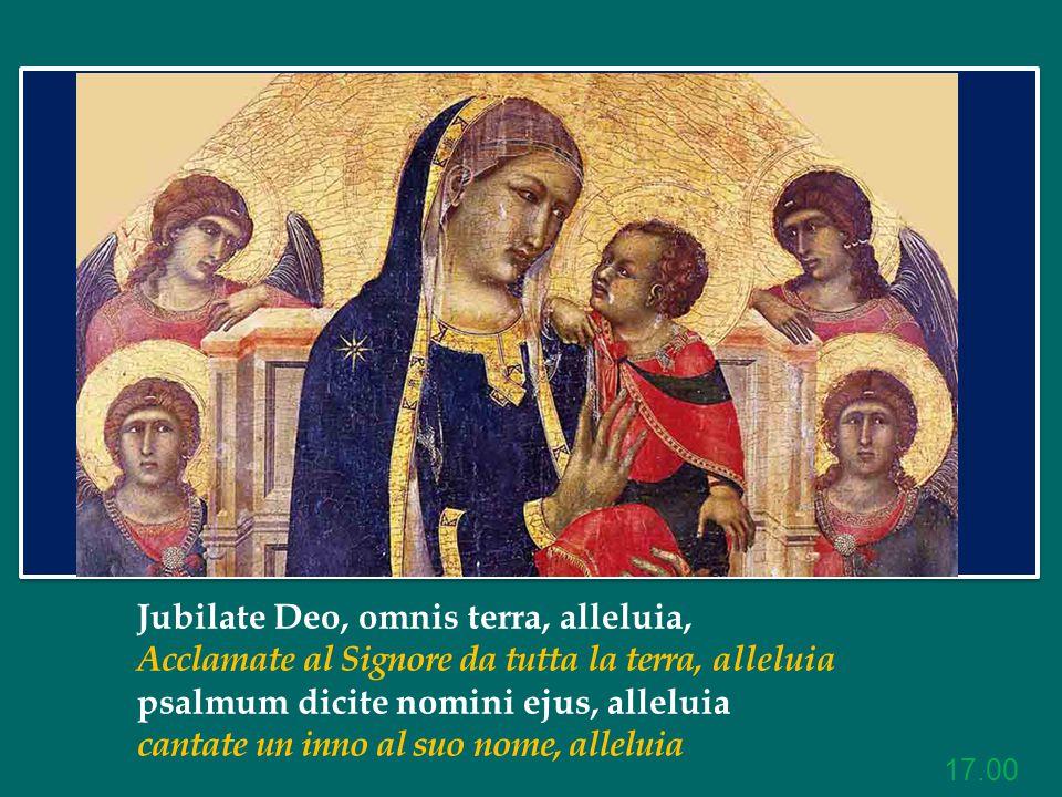 Jubilate Deo, omnis terra, alleluia, Acclamate al Signore da tutta la terra, alleluia psalmum dicite nomini ejus, alleluia cantate un inno al suo nome, alleluia