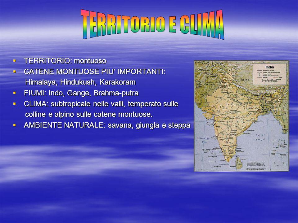  TERRITORIO: montuoso  CATENE MONTUOSE PIU' IMPORTANTI: Himalaya, Hindukush, Karakoram Himalaya, Hindukush, Karakoram  FIUMI: Indo, Gange, Brahma-p