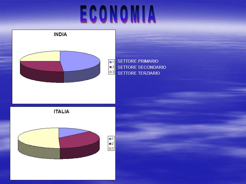 SETTORE PRIMARIO SETTORE SECONDARIO SETTORE TERZIARIO INDIA ITALIA