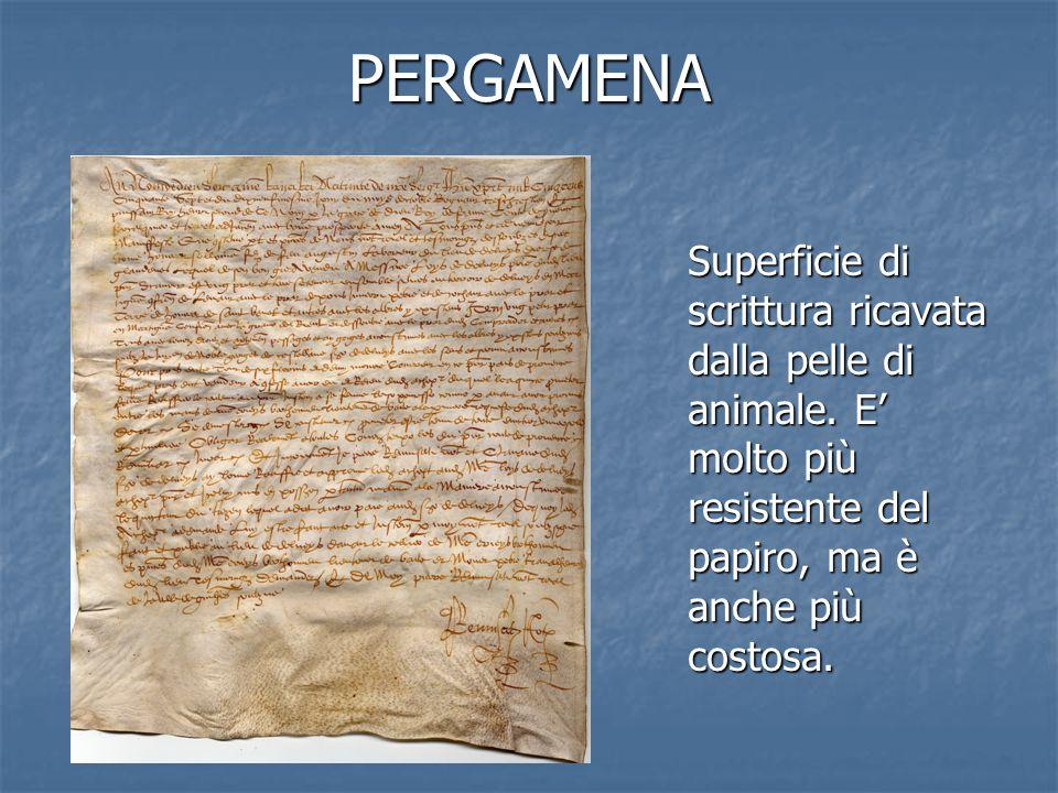 PERGAMENA Superficie di scrittura ricavata dalla pelle di animale. E' molto più resistente del papiro, ma è anche più costosa.