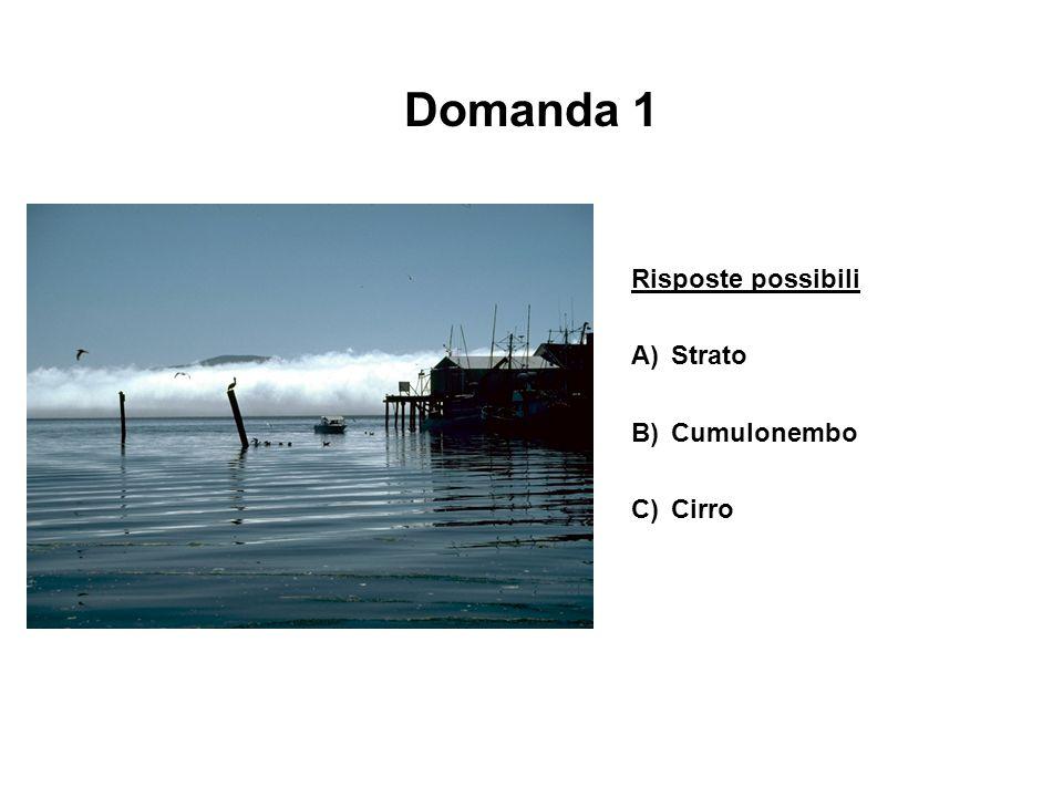Domanda 1 Risposte possibili A)Strato B)Cumulonembo C)Cirro