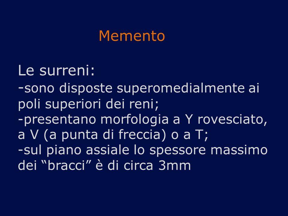 Memento Le surreni: - sono disposte superomedialmente ai poli superiori dei reni; -presentano morfologia a Y rovesciato, a V (a punta di freccia) o a T; -sul piano assiale lo spessore massimo dei bracci è di circa 3mm