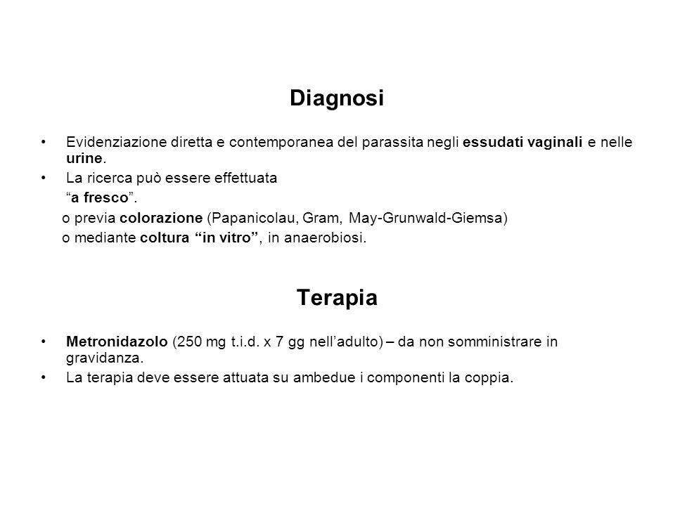 Diagnosi Evidenziazione diretta e contemporanea del parassita negli essudati vaginali e nelle urine.