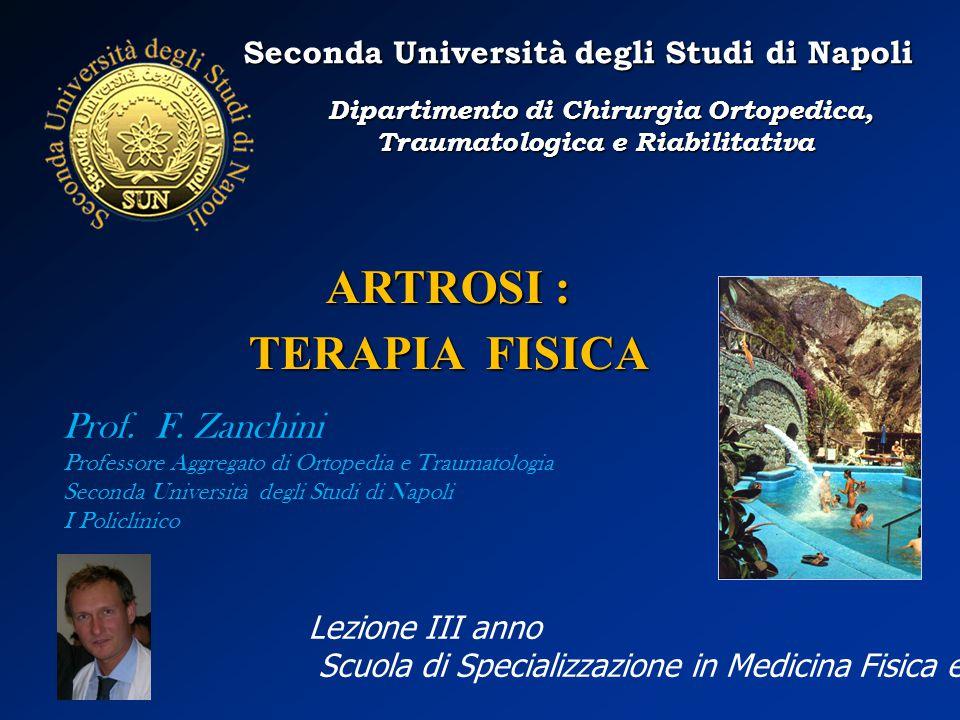 ARTROSI : TERAPIA FISICA Seconda Università degli Studi di Napoli Dipartimento di Chirurgia Ortopedica, Traumatologica e Riabilitativa Dipartimento di