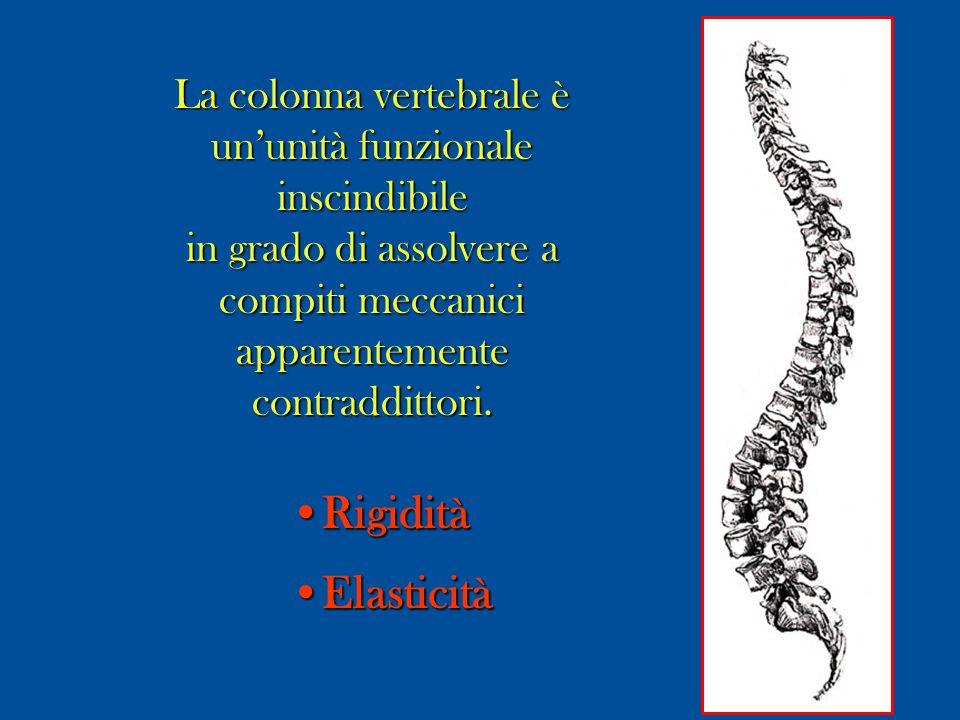 La colonna vertebrale è un'unità funzionale inscindibile in grado di assolvere a compiti meccanici apparentementecontraddittori. RigiditàRigidità Elas