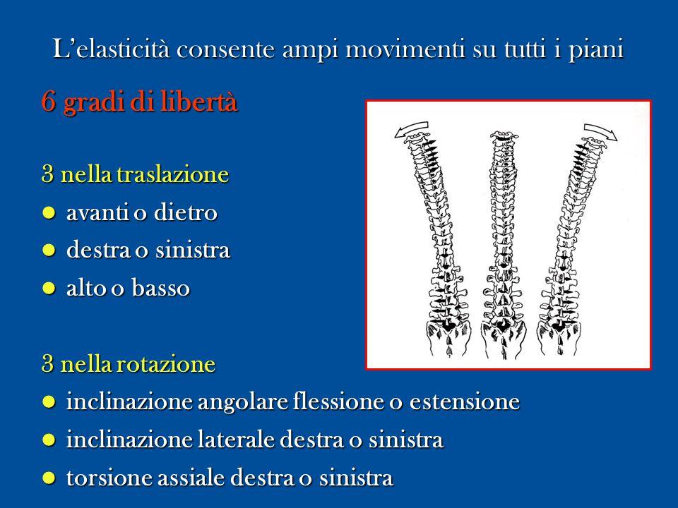 LA STABILITA' VERTEBRALE Stato in cui i carichi fisiologici vengono assorbiti dalla colonna senza alcun movimento anomalo ed alcun danno fisiologico.