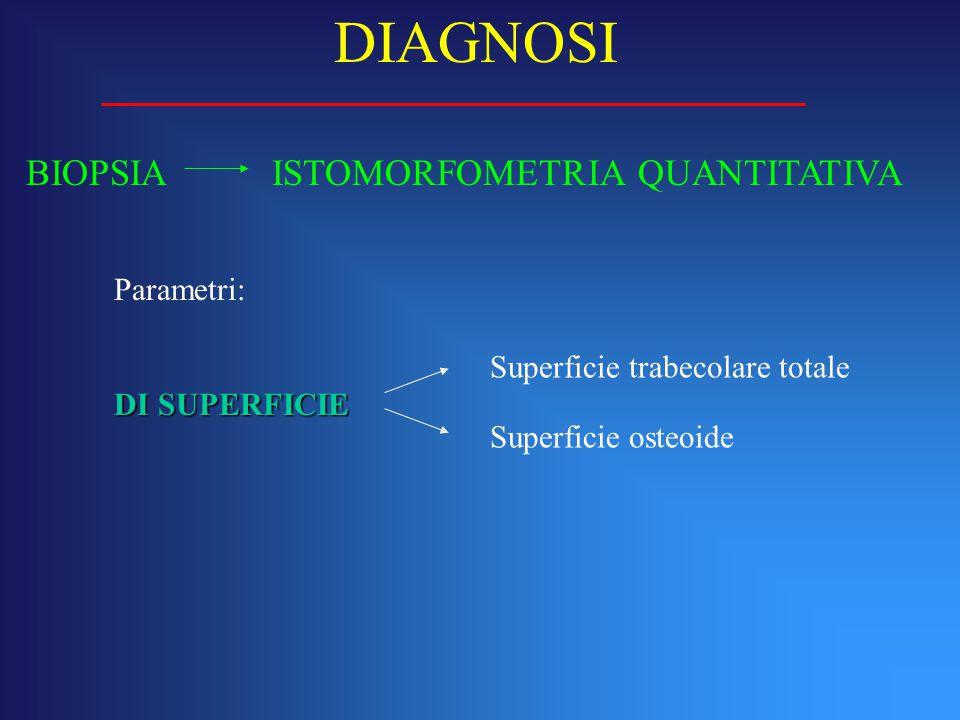 BIOPSIA ISTOMORFOMETRIA QUANTITATIVA DIAGNOSI Parametri: DI SUPERFICIE Superficie trabecolare totale Superficie osteoide