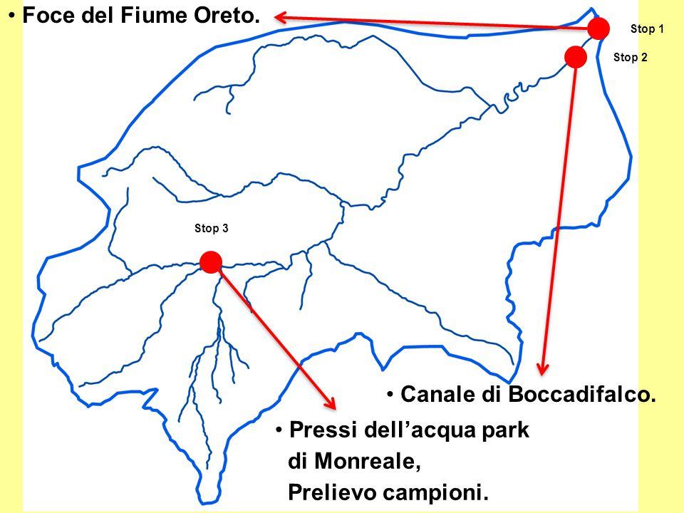 Foce del Fiume Oreto. Canale di Boccadifalco. Pressi dell'acqua park di Monreale, Prelievo campioni. Stop 1 Stop 2 Stop 3