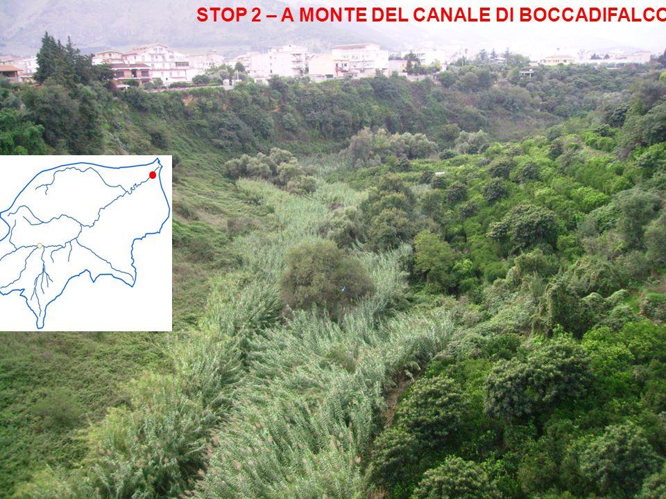 STOP 2 – A MONTE DEL CANALE DI BOCCADIFALCO