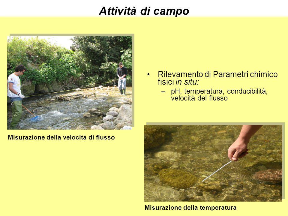 Misurazione della velocità di flusso Misurazione della temperatura Rilevamento di Parametri chimico fisici in situ: –pH, temperatura, conducibilità, v