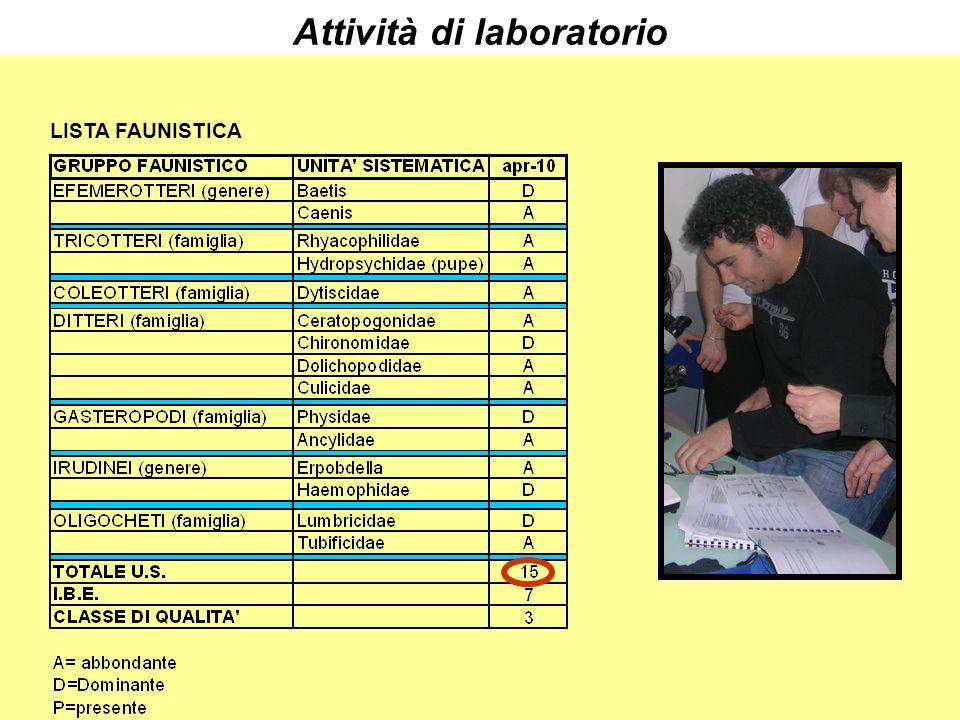 LISTA FAUNISTICA Attività di laboratorio