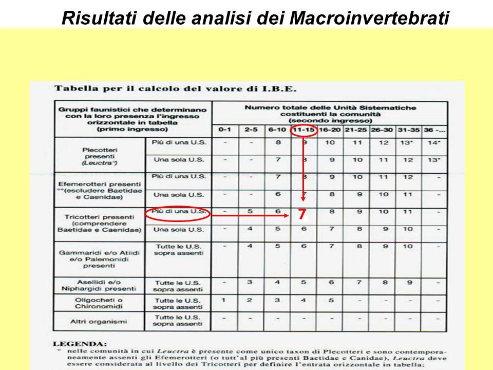 7 Risultati delle analisi dei Macroinvertebrati