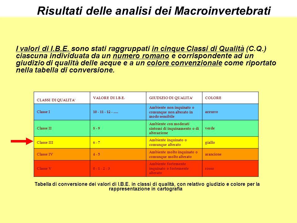 I valori di I.B.E. sono stati raggruppati in cinque Classi di Qualità (C.Q.) ciascuna individuata da un numero romano e corrispondente ad un giudizio