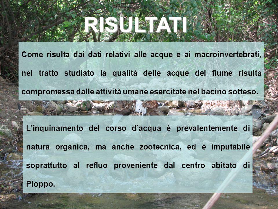 Come risulta dai dati relativi alle acque e ai macroinvertebrati, nel tratto studiato la qualità delle acque del fiume risulta compromessa dalle attiv
