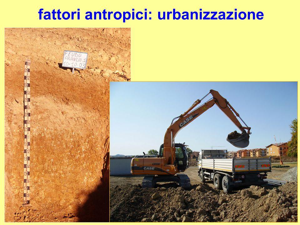 fattori antropici: urbanizzazione