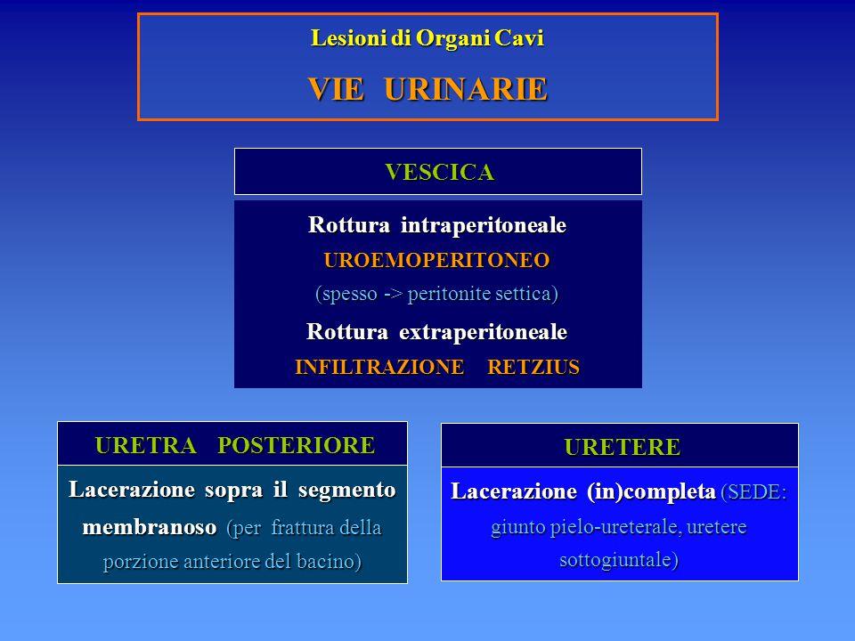Lesioni di Organi Cavi VIE URINARIE VESCICA VESCICA URETERE URETERE URETRA POSTERIORE URETRA POSTERIORE Rottura intraperitoneale UROEMOPERITONEO (spes