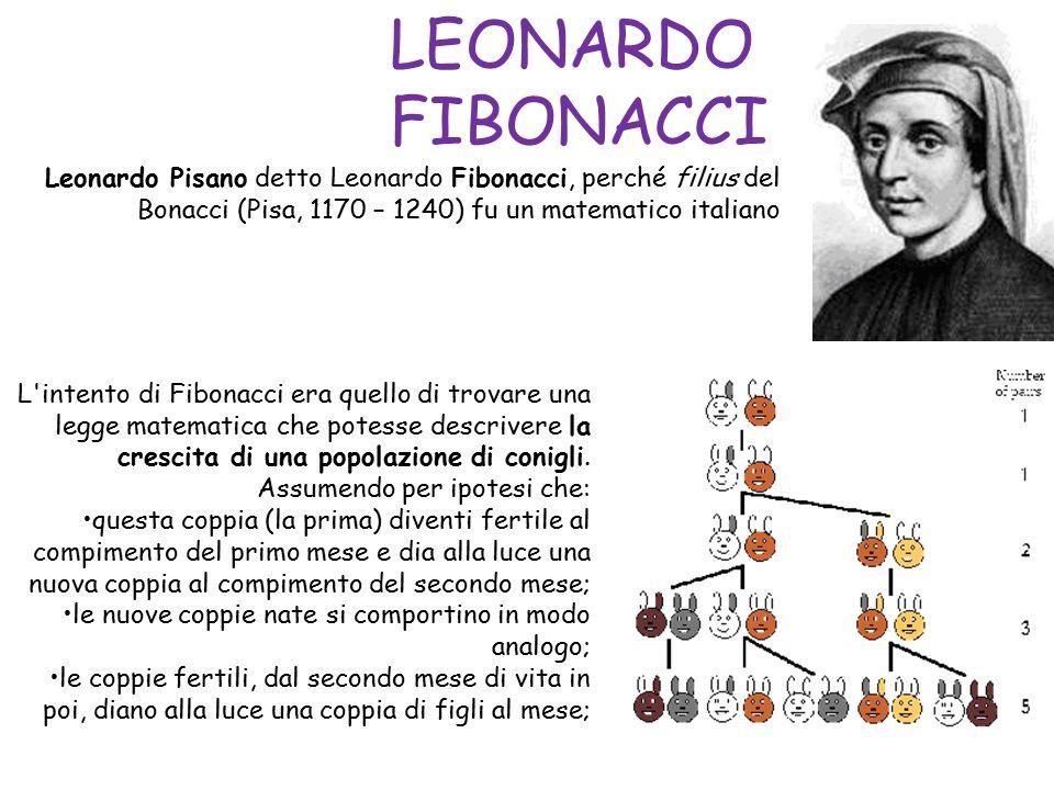 1, 1, 2, 3, 5, 8,13,21,34,55,89, 144, 233… LA SUCCESSIONE DI FIBONACCI COSA CENTRA LA SUCCESSIONE DI FIBONACCI CON LA SEZIONE AUREA.
