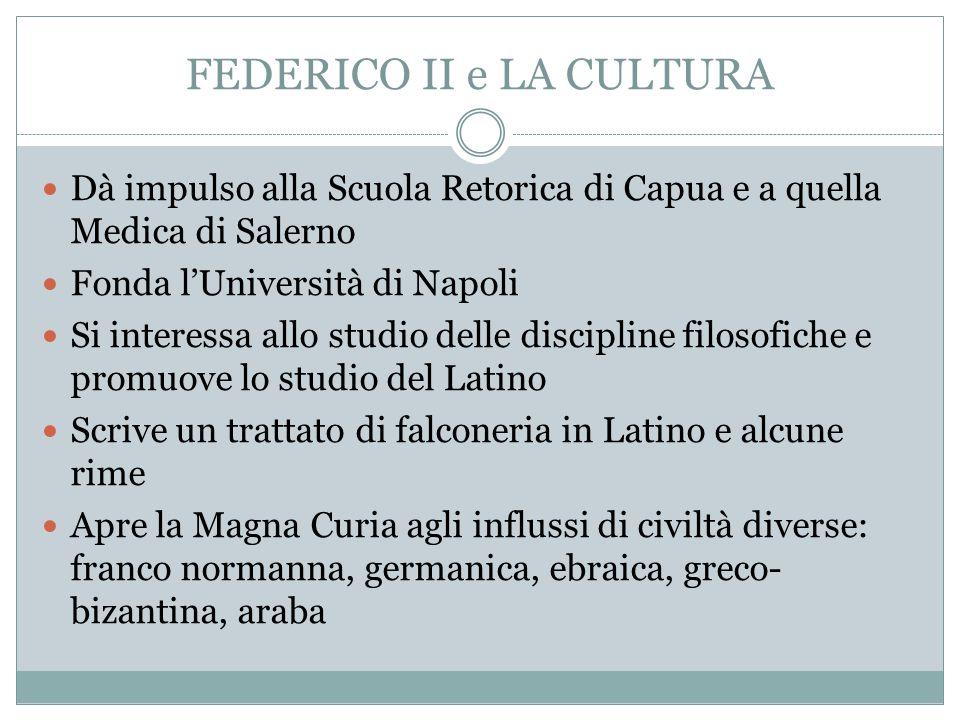 FEDERICO II e LA CULTURA Dà impulso alla Scuola Retorica di Capua e a quella Medica di Salerno Fonda l'Università di Napoli Si interessa allo studio d