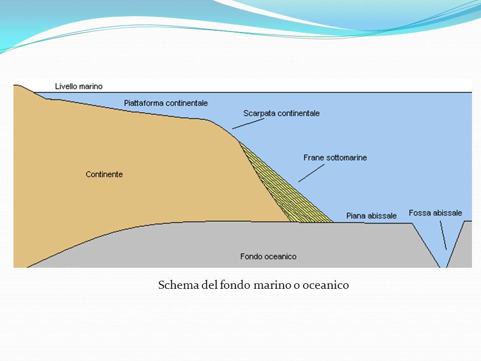 Schema del fondo marino o oceanico