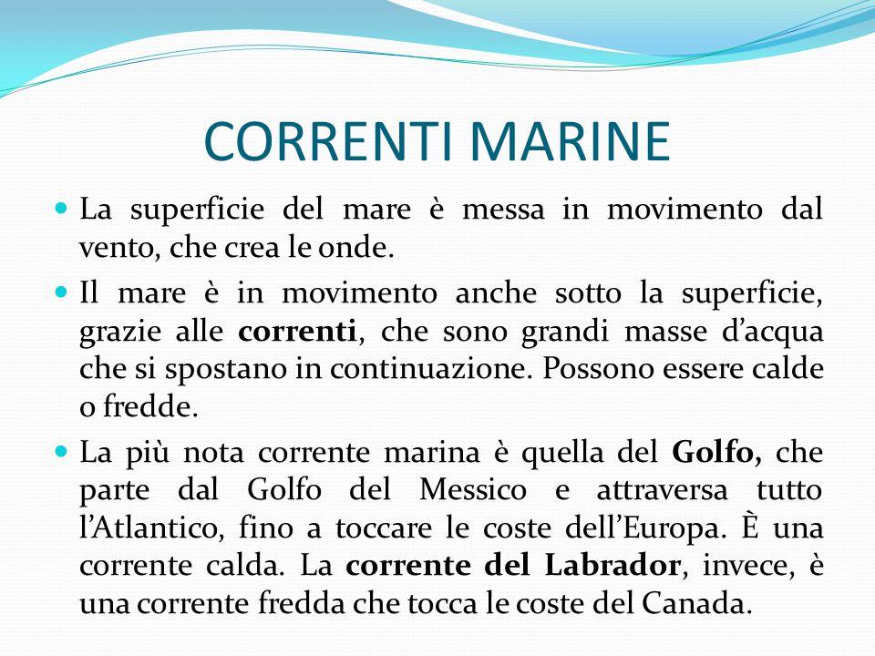 CORRENTI MARINE La superficie del mare è messa in movimento dal vento, che crea le onde. Il mare è in movimento anche sotto la superficie, grazie alle