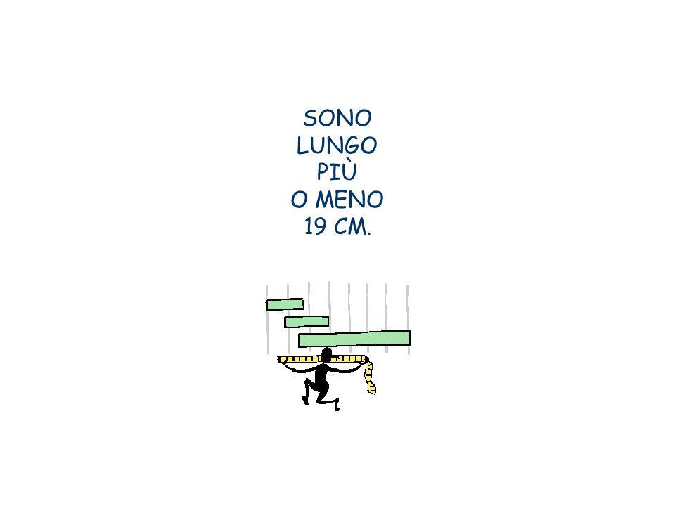 SONO LUNGO PIÙ O MENO 19 CM.