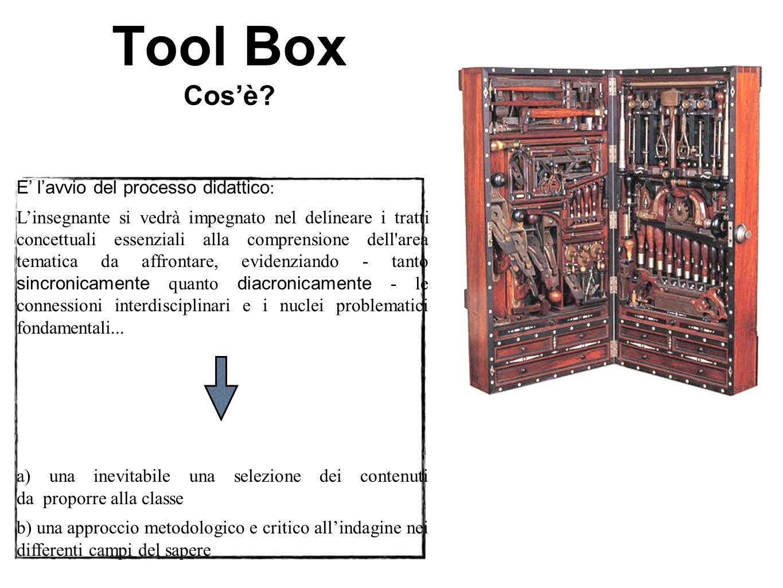 Tool Box Cos'è? E' l'avvio del processo didattico : L'insegnante si vedrà impegnato nel delineare i tratti concettuali essenziali alla comprensione de