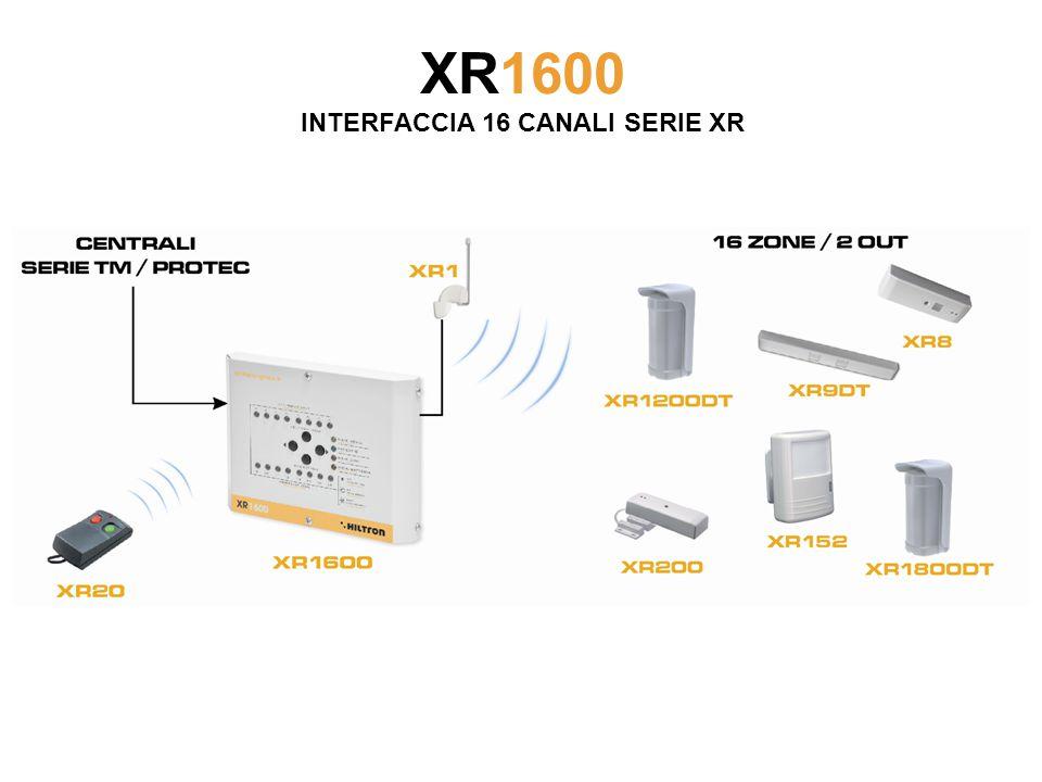XR1600 INTERFACCIA 16 CANALI SERIE XR