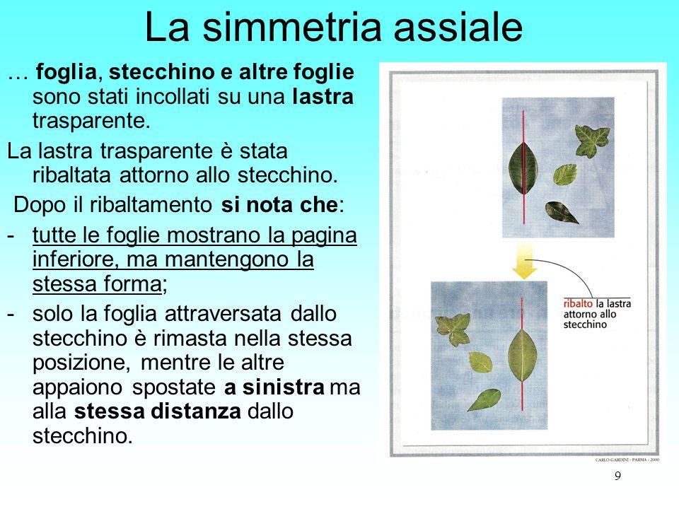 9 La simmetria assiale … foglia, stecchino e altre foglie sono stati incollati su una lastra trasparente. La lastra trasparente è stata ribaltata atto