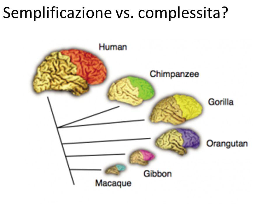 Semplificazione vs. complessita?