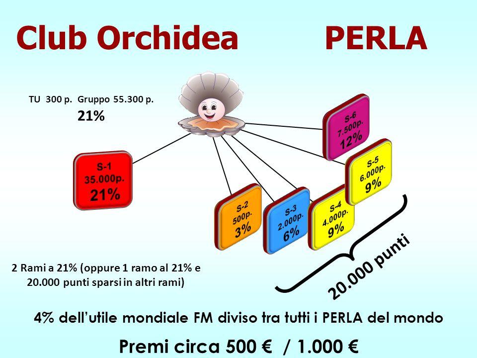 Premi circa 500 € / 1.000 € 20.000 punti TU 300 p. Gruppo 55.300 p. 21% 2 Rami a 21% (oppure 1 ramo al 21% e 20.000 punti sparsi in altri rami) 4% del