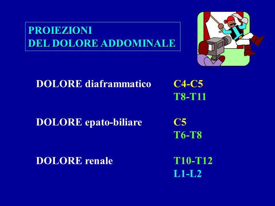 DOLORE diaframmaticoC4-C5 T8-T11 DOLORE epato-biliareC5 T6-T8 DOLORE renaleT10-T12 L1-L2 PROIEZIONI DEL DOLORE ADDOMINALE