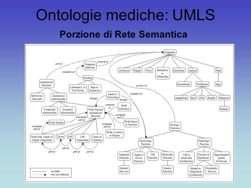 Ontologie mediche: UMLS Porzione di Rete Semantica