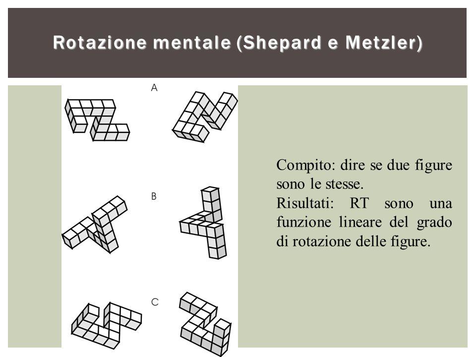 Rotazione mentale (Shepard e Metzler) Compito: dire se due figure sono le stesse. Risultati: RT sono una funzione lineare del grado di rotazione delle