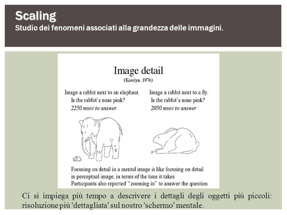 Scaling Studio dei fenomeni associati alla grandezza delle immagini. Ci si impiega più tempo a descrivere i dettagli degli oggetti più piccoli: risolu