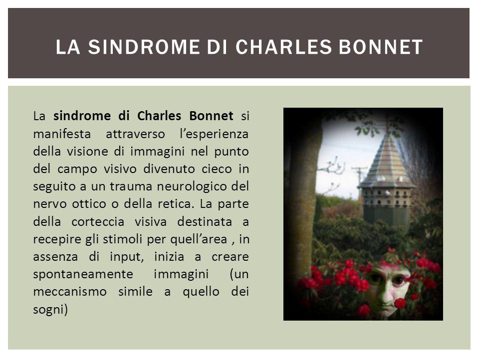 LA SINDROME DI CHARLES BONNET La sindrome di Charles Bonnet si manifesta attraverso l'esperienza della visione di immagini nel punto del campo visivo