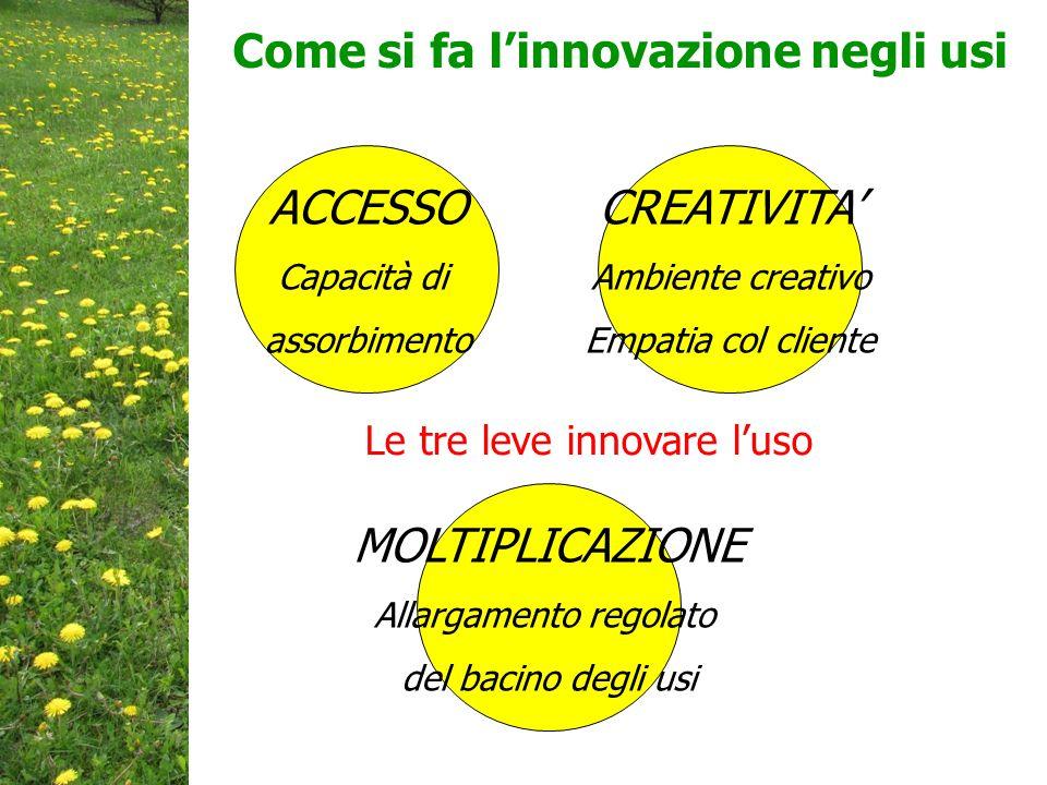 Come si fa l'innovazione negli usi ACCESSO Capacità di assorbimento MOLTIPLICAZIONE Allargamento regolato del bacino degli usi CREATIVITA' Ambiente creativo Empatia col cliente Le tre leve innovare l'uso