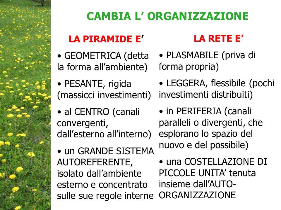 LA PIRAMIDE E' GEOMETRICA (detta la forma all'ambiente) PESANTE, rigida (massicci investimenti) al CENTRO (canali convergenti, dall'esterno all'interno) un GRANDE SISTEMA AUTOREFERENTE, isolato dall'ambiente esterno e concentrato sulle sue regole interne CAMBIA L' ORGANIZZAZIONE LA RETE E' PLASMABILE (priva di forma propria) LEGGERA, flessibile (pochi investimenti distribuiti) in PERIFERIA (canali paralleli o divergenti, che esplorano lo spazio del nuovo e del possibile) una COSTELLAZIONE DI PICCOLE UNITA' tenuta insieme dall'AUTO- ORGANIZZAZIONE