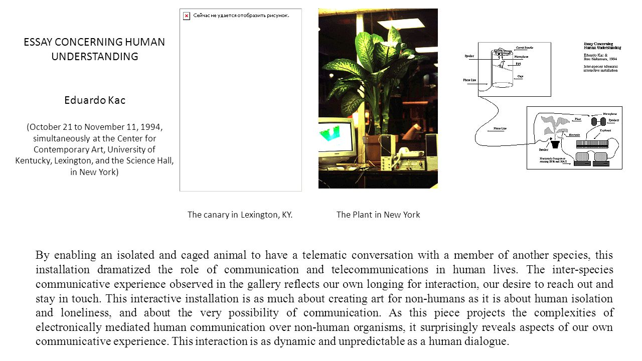 By enabling an isolated and caged animal to have a telematic conversation with a member of another species, this installation dramatized the role of communication and telecommunications in human lives.