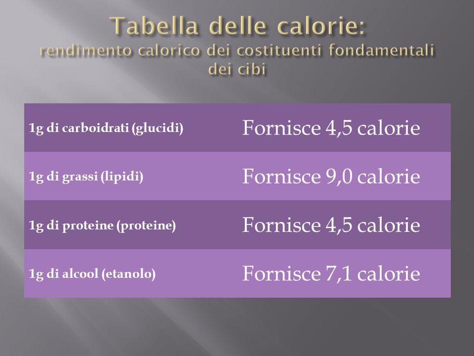 1g di carboidrati (glucidi) Fornisce 4,5 calorie 1g di grassi (lipidi) Fornisce 9,0 calorie 1g di proteine (proteine) Fornisce 4,5 calorie 1g di alcoo