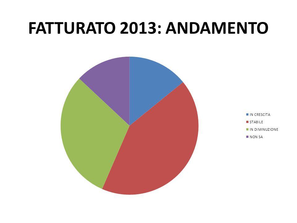 FATTURATO 2013: ANDAMENTO
