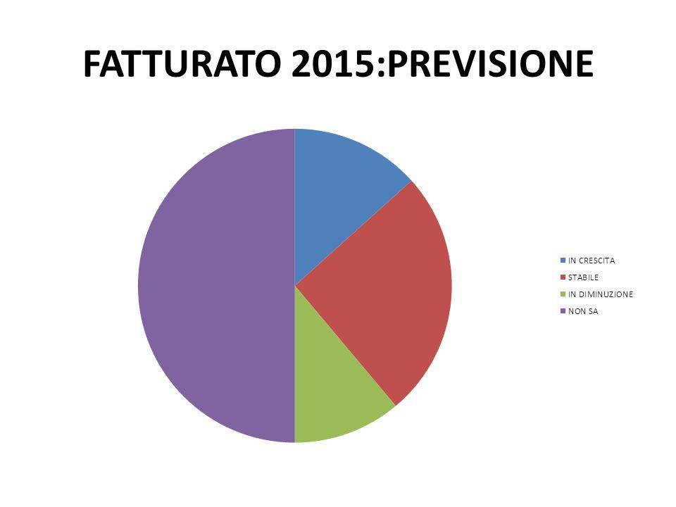 FATTURATO 2015:PREVISIONE