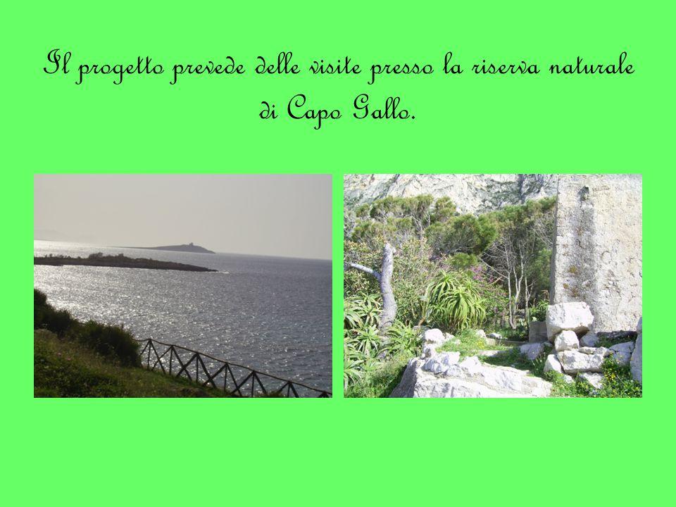 Il progetto prevede delle visite presso la riserva naturale di Capo Gallo.