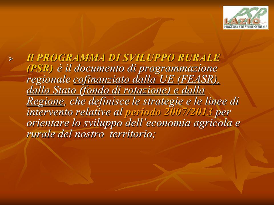 CALENDARIO DEI LAVORI A livello regionale  Approvazione da parte degli organi istituzionali regionali (Giunta e Consiglio Regionale) del PSR, da inviare alla UE.