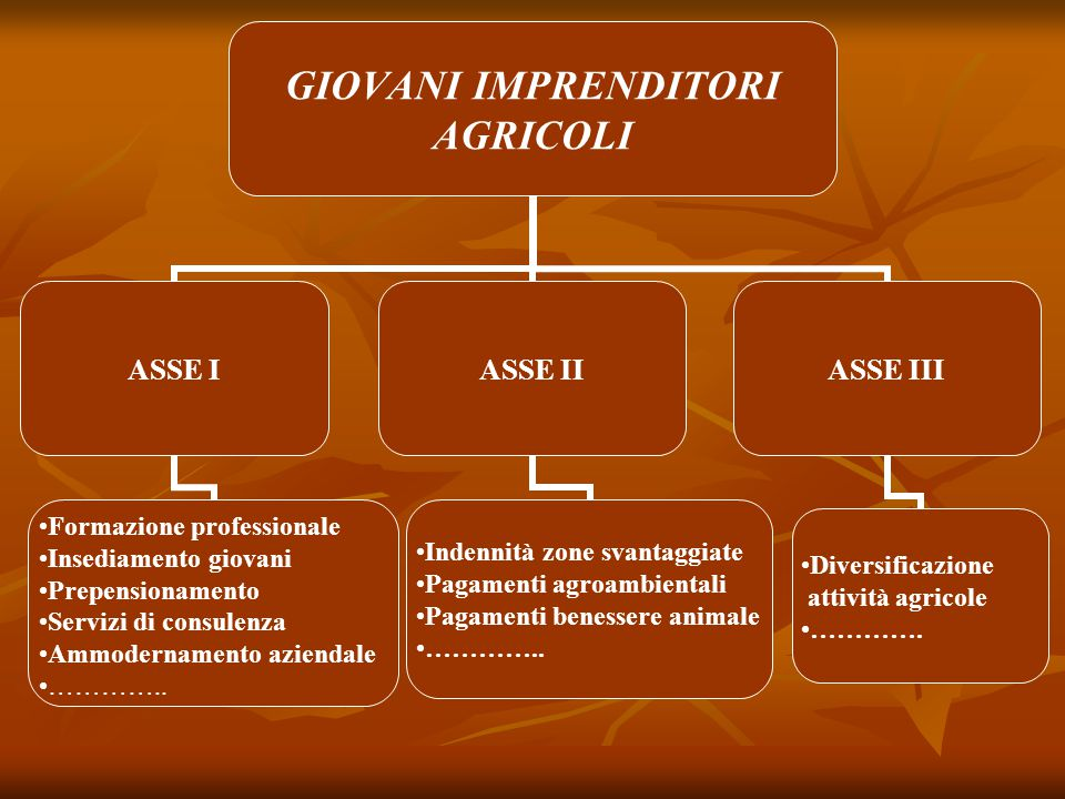 MISURA 112 - INSEDIAMENTO DI GIOVANI AGRICOLTORI Riferimenti normativi Articolo 22 del Regolamento CE n.1698/05 Articolo 22 del Regolamento CE n.1698/05 Articolo 13 del Regolamento CE n.