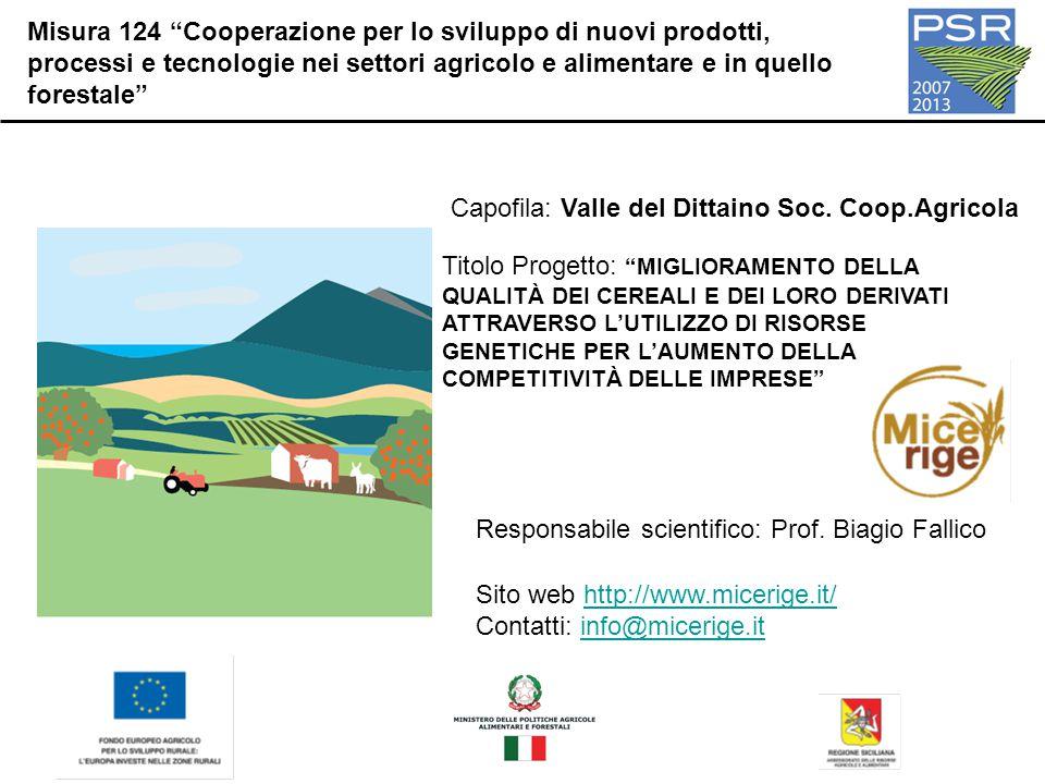 Misura 124 Cooperazione per lo sviluppo di nuovi prodotti, processi e tecnologie nei settori agricolo e alimentare e in quello forestale Capofila: Valle del Dittaino Soc.